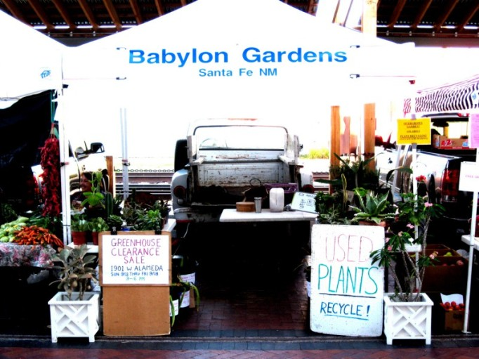 2010 Babylon Gardens Salvage Nursery
